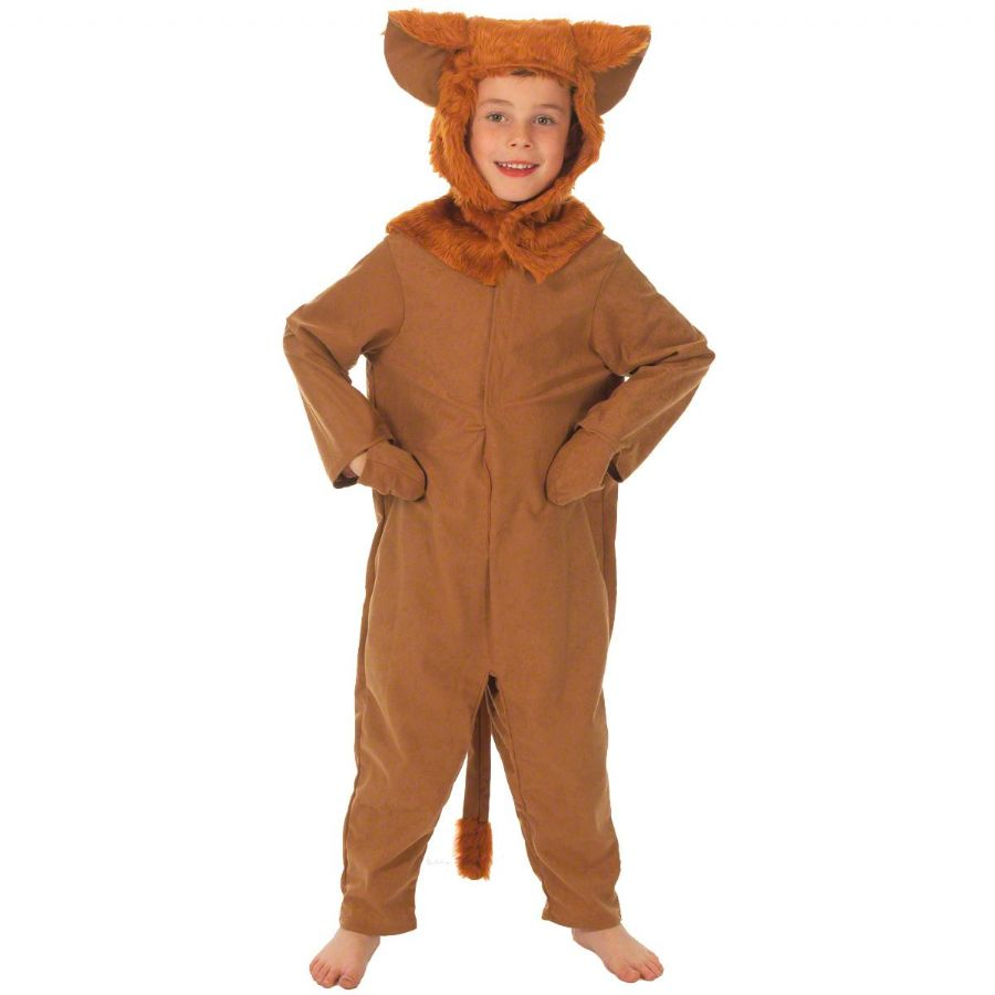 Children's Boys and Girls Wild Jungle Lion Wizard of Oz Fancy Dress Up Costume